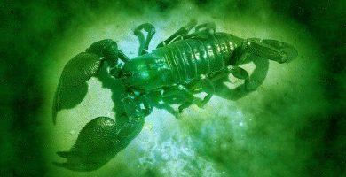 Horóscopo verde Escorpio