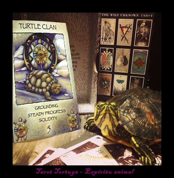 tarot tortuga espíritu animal